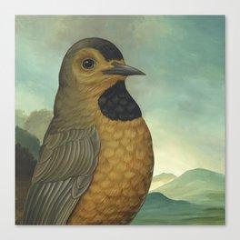 Bachman's Warbler (Vermivora bachmanii) Canvas Print