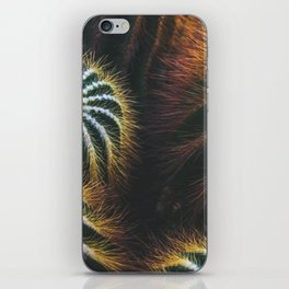 Botanical Gardens - Cactus #667 iPhone Skin