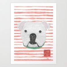 English Bulldog, White Bulldog, Modern Art Print