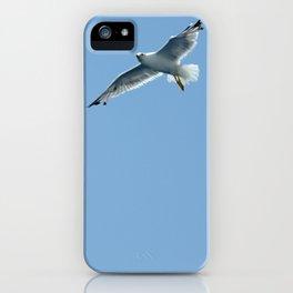 Seagull in Croatia #2 iPhone Case