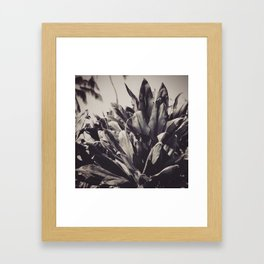 Ti Leaves Framed Art Print
