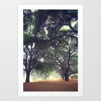 foggy path, cross processed Art Print