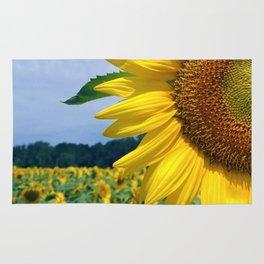 Sunflower in Paris Rug