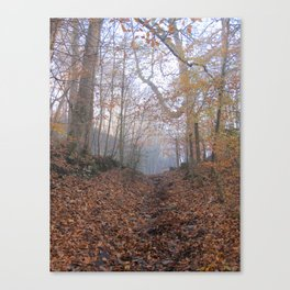 Image twenty five Canvas Print