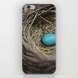 Robin's Egg Nest iPhone Skin