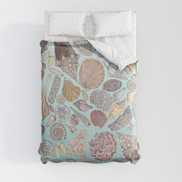 Sanibel Sea Shells Comforters