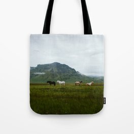 Icelandic Horses Posing for a Photo Tote Bag