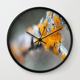 Mold Wall Clock