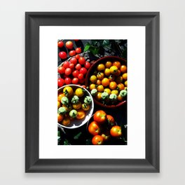 Yellow and red tomatoes I Framed Art Print