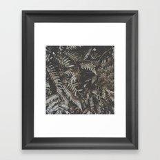 Forest Fern Framed Art Print