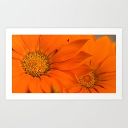 Double orange. Art Print
