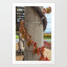 Column with Grapevine II Art Print