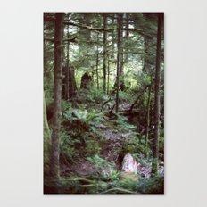 Vancouver Island Rainforest Canvas Print