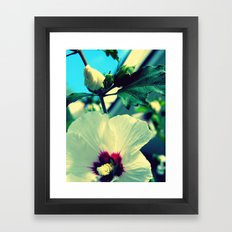 tiki flower with bud ~ flower photography Framed Art Print
