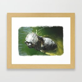 Turtle Love Framed Art Print