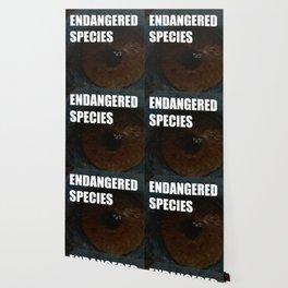 Endangered Species Wallpaper
