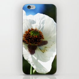 White Poppy in a field iPhone Skin