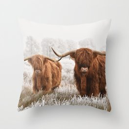 Hairy Scottish highlanders in a natural winter landscape. Throw Pillow
