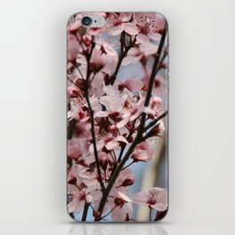 Pink Branches iPhone Skin