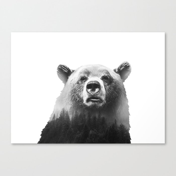 Big Bear #3 Canvas Print