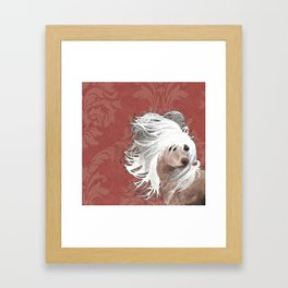Chinese Crested  Framed Art Print