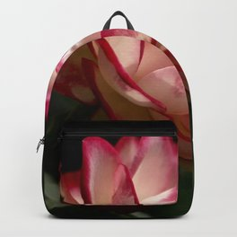 Tranquility with Hope in a Rose Backpack
