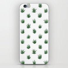 Haworthia Succulents iPhone & iPod Skin