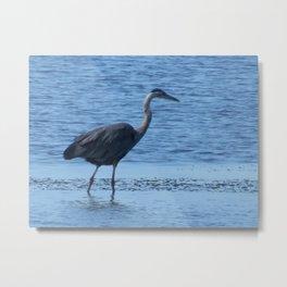 Blue Heron at Tillamook Bay Metal Print