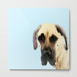Great Dane Art - Dog Painting by Sharon Cummings Metal Print