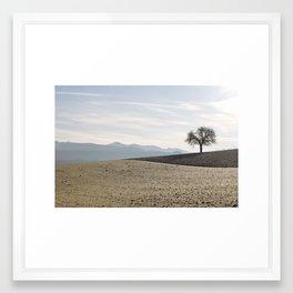 Lonesome tree Framed Art Print