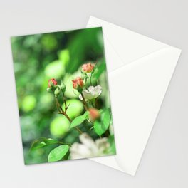 Princess garden Stationery Cards