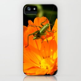 little grasshopper iPhone Case