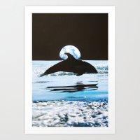 dolphin Art Prints featuring Dolphin by John Turck