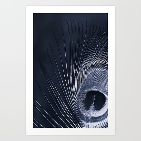 Blue Peacock Art Print