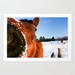 And Getting Nosy Art Print
