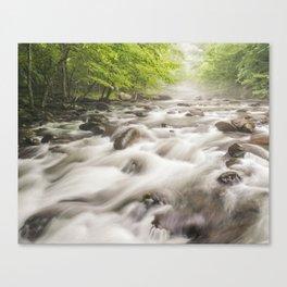 Misty River Canvas Print