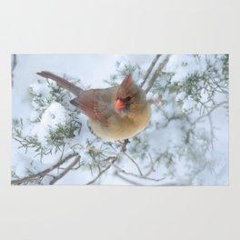 Drifting (Northern Cardinal) Rug