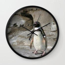 Humboldt Penguin Wall Clock