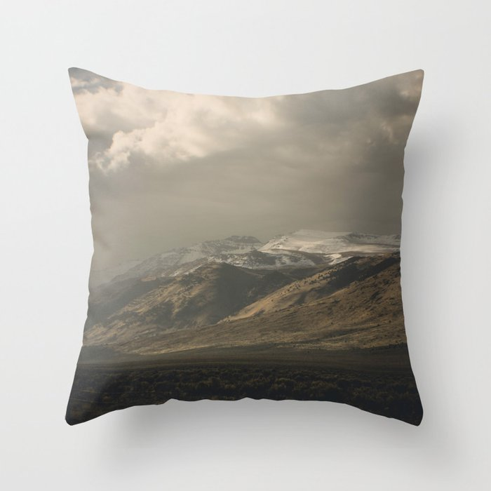 Out the Car Window Throw Pillow