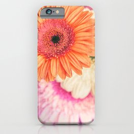 Sweet Daisy Sorbet iPhone Case