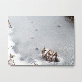 Tracks Metal Print