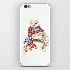 Winking Arctic Owl in Scarf iPhone & iPod Skin