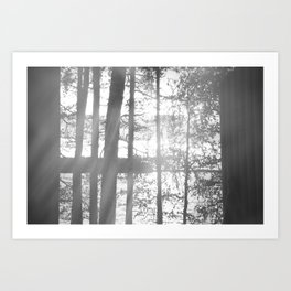 Cottage Life  Art Print