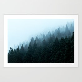 Japanese Forest Art Print
