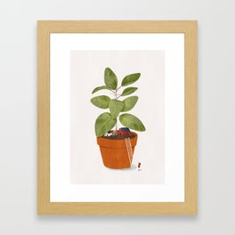 Plant home Framed Art Print