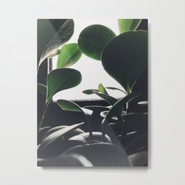 Space To Nature Metal Print