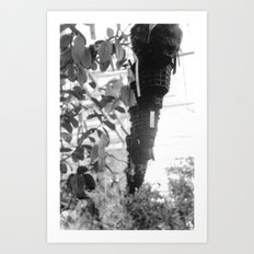 Planters Art Print