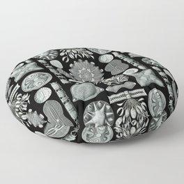 Ernst Haeckel - Scientific Illustration - Diatomea Floor Pillow