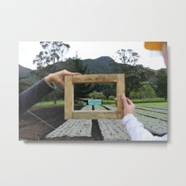 a life of frames and farms | lettuce grow Metal Print