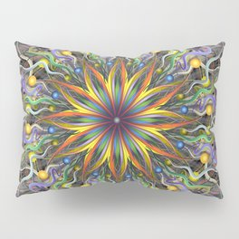 Reverse Cosmosis Pillow Sham